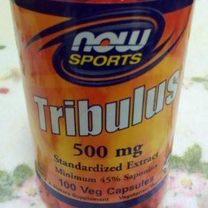 20191201_Tribulus01